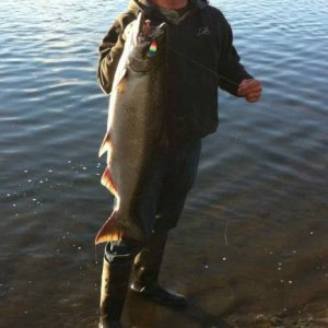 First Tide water Chinook that day