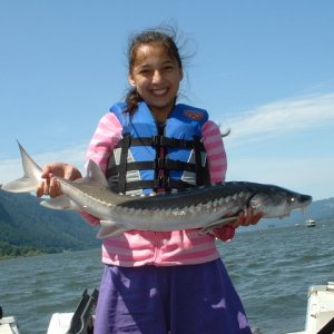Gorge Sturgeon Fishing5