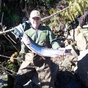 Sandy_Steelhead_march_7_2013_006