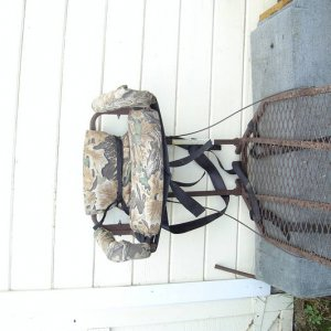 Treestands for sale