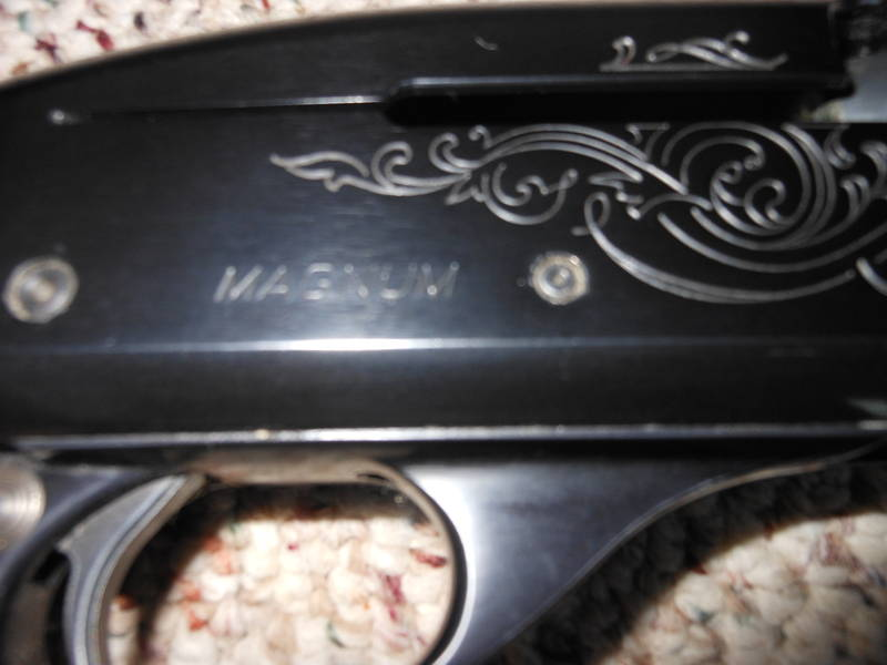 remington 1100 magnum ? - www ifish net